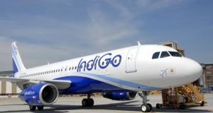 Indigo3--621x414