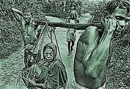 স্বাধীনতা যুদ্ধে দক্ষিণাঞ্চলের বাংলার সূর্যসন্তান