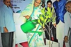 Hasina-www.jatirkhantha.com.bd.1