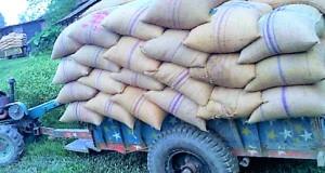 badargong gam-www.jatirkhantha.com.bd