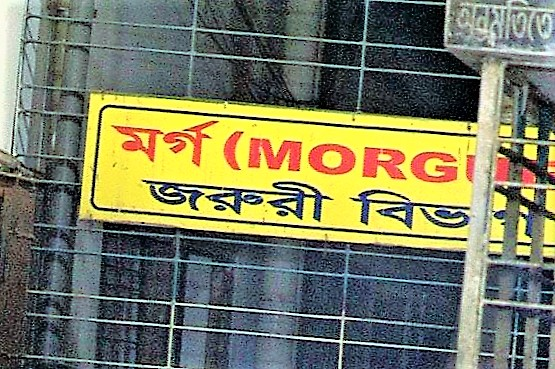 morg-www.jatirkhantha.com.bd