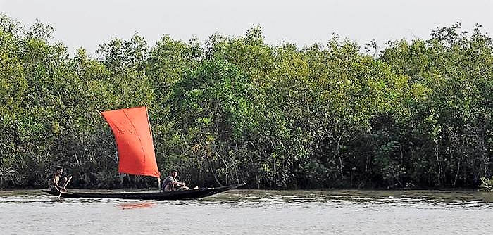 sundorban-www.jatirkhantha.com.bd