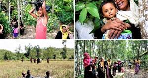 rohinga-www.jatirkhantha.com.bd.111